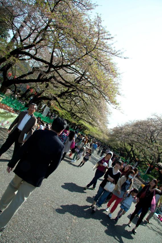 010_Ueno Park_04042013