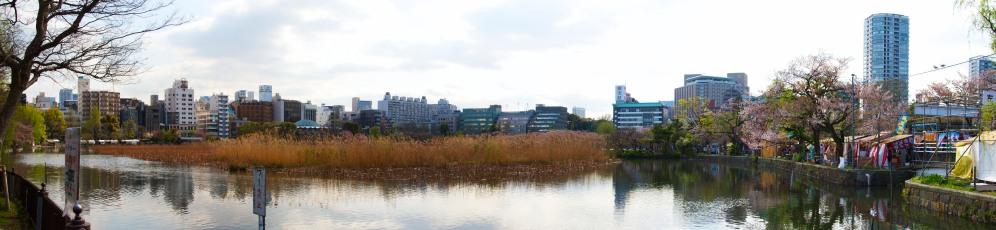 Ueno Park Pond Pan