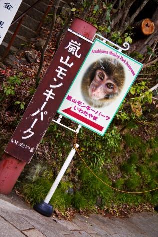 Iwata Park