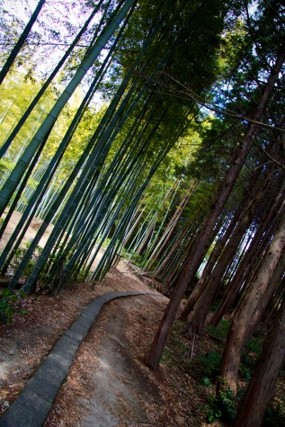 117_Inari Shrine_05022013