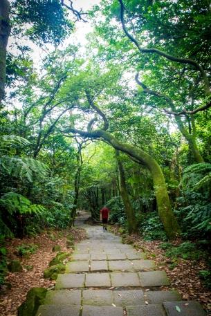 072_Taiwan_130711
